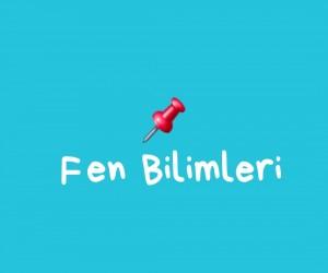4. SINIF FEN BİLİMLERİ
